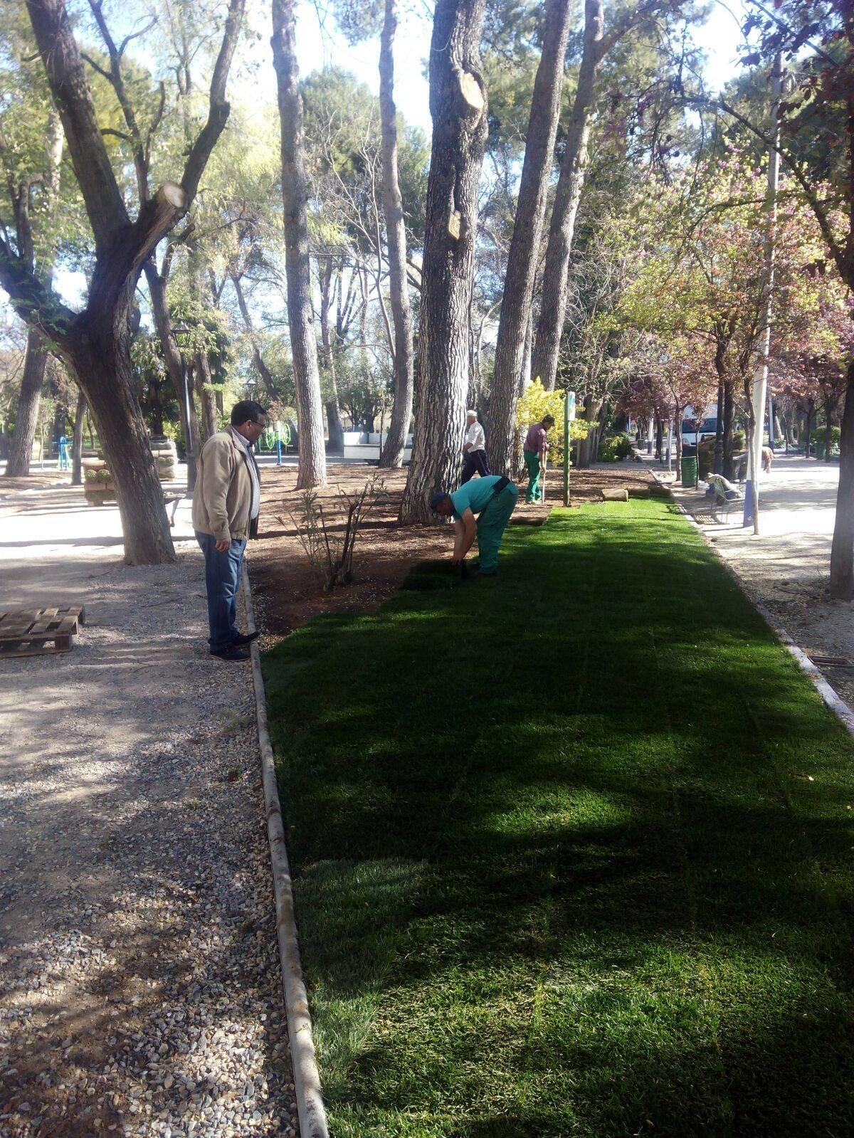 renovando praderas cesped parque herencia - Las obras de renovación del Parque Municipal casi acabadas