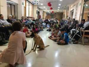 VisitaCarrascoAlcaldeResidencia 1 300x225 - El CEIP Carrasco Alcalde de Herencia asiste a un programa de terapia con perros en la Residencia Nª Srª de la Merced