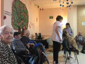 VisitaCarrascoAlcaldeResidencia 3 300x225 - El CEIP Carrasco Alcalde de Herencia asiste a un programa de terapia con perros en la Residencia Nª Srª de la Merced