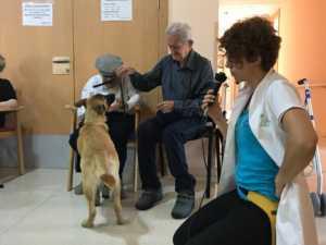 VisitaCarrascoAlcaldeResidencia 4 300x225 - El CEIP Carrasco Alcalde de Herencia asiste a un programa de terapia con perros en la Residencia Nª Srª de la Merced