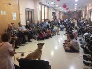 VisitaCarrascoAlcaldeResidencia 5 300x225 - El CEIP Carrasco Alcalde de Herencia asiste a un programa de terapia con perros en la Residencia Nª Srª de la Merced