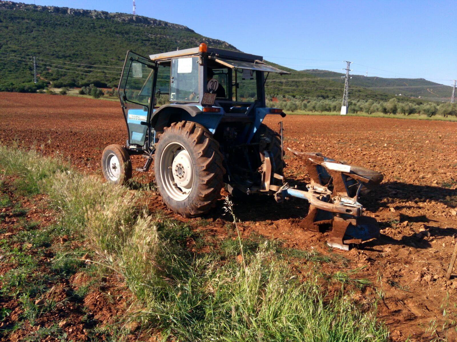 Resultados del I Concurso de destreza de arado en Romería San Isidro 12