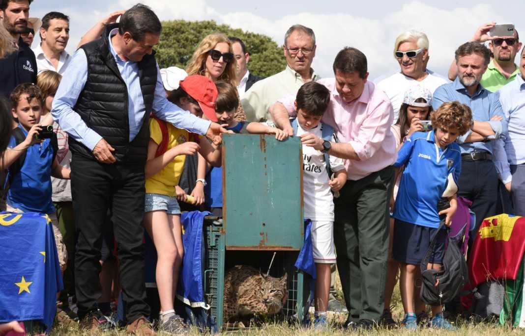 LIFE+Iberlince optará al mejor proyecto de Naturaleza y Diversidad de la Unión Europea 4