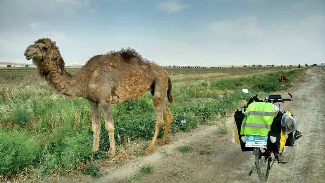 Perle adentrandose en el Asia Central03 - Perlé adentrándose en el Asia Central