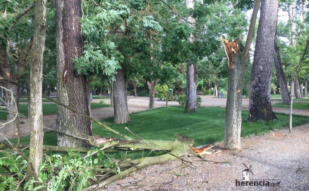 caida ramas tormenta viento herencia 2 1068x660 - Tormentas en la tarde domingo y ramas caídas en el parque