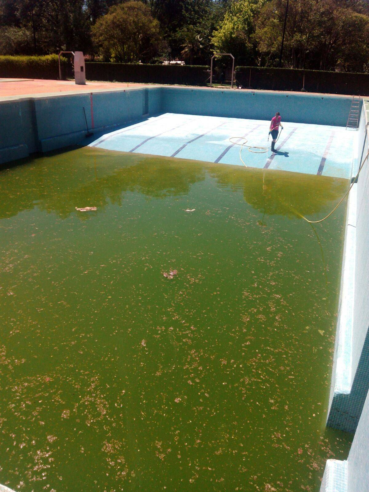 limpieza de piscina herencia para verano 2017 - Preparando la Piscina Municipal de Herencia para su próxima apertura