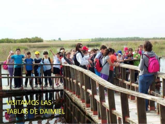 power point ecoescuela 13 638 - CEIP Carrasco Alcalde consigue la Bandera Verde y entrar en la Red Ecoescuelas
