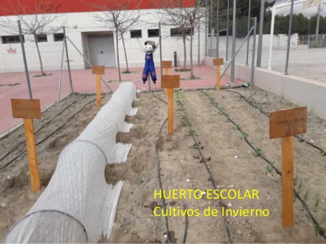CEIP Carrasco Alcalde consigue la Bandera Verde y entrar en la Red Ecoescuelas 2