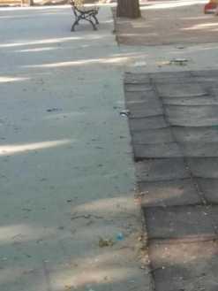 zona infantil parque herencia mal estado 10 247x329 - Zona infantil del parque sigue necesitando una renovación urgente