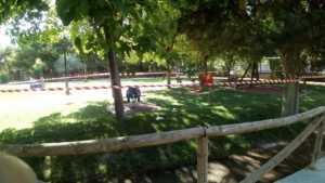 Zona infantil del parque sigue necesitando una renovación urgente 12