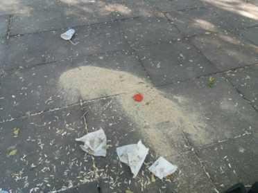 zona infantil parque herencia mal estado - 3