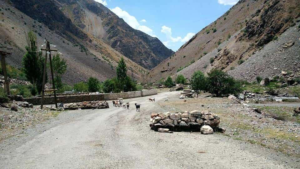 Perle atravesando el Pamir y llegando a Kirguistan13 - Perlé atravesando el Pamir y llegando a Kirguistán