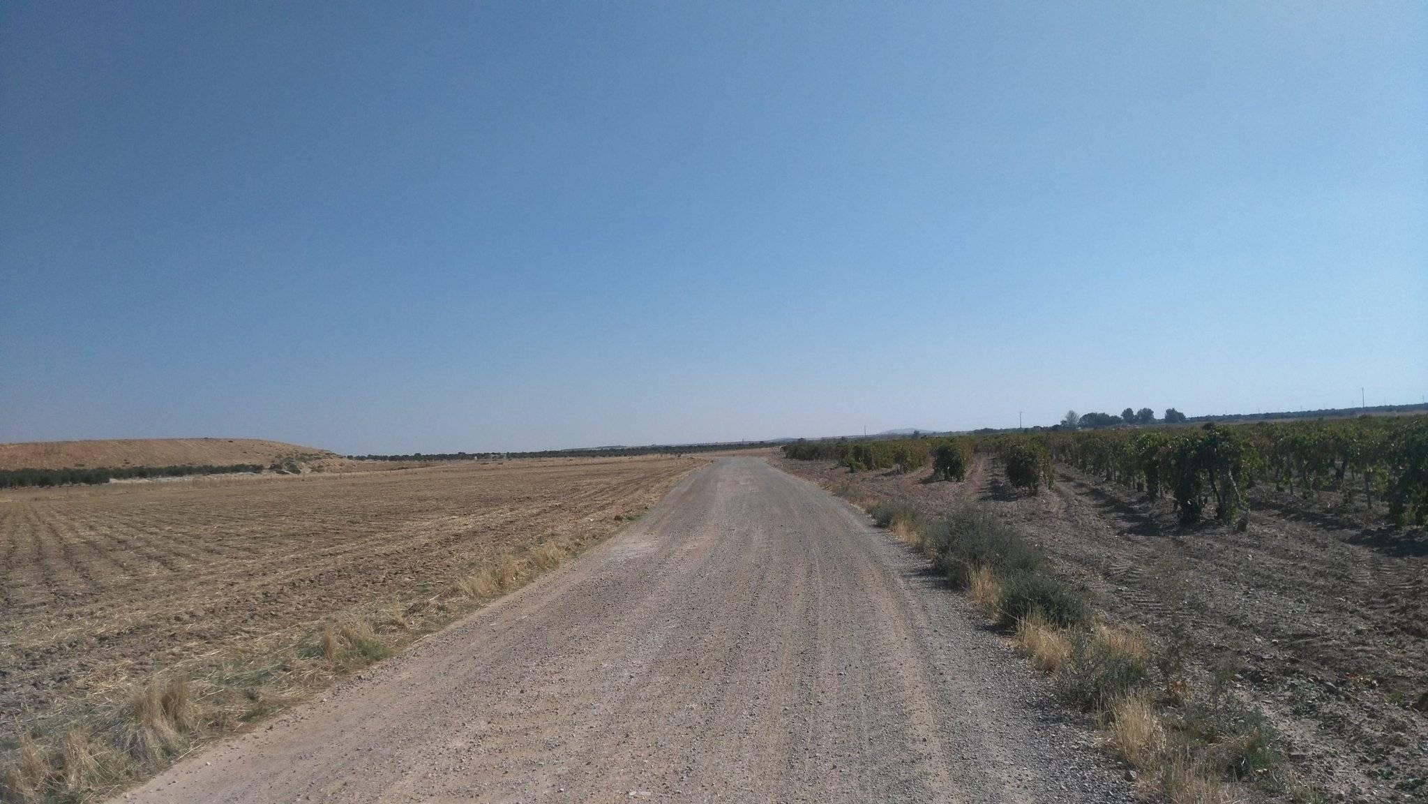 caminos de herencia ciudad real 1 - Próximos caminos rurales que serán arreglados en Herencia