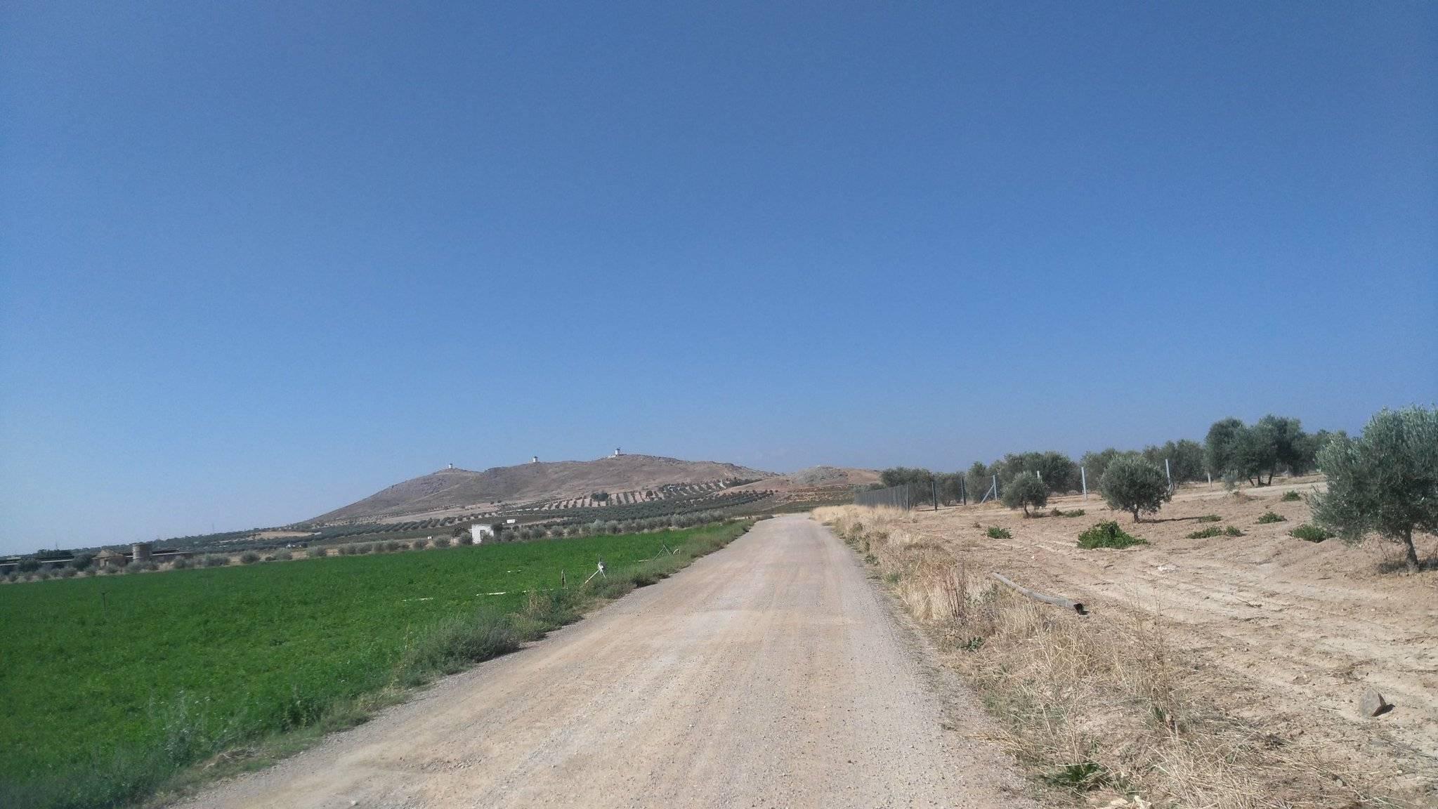 caminos de herencia ciudad real 2 - Próximos caminos rurales que serán arreglados en Herencia