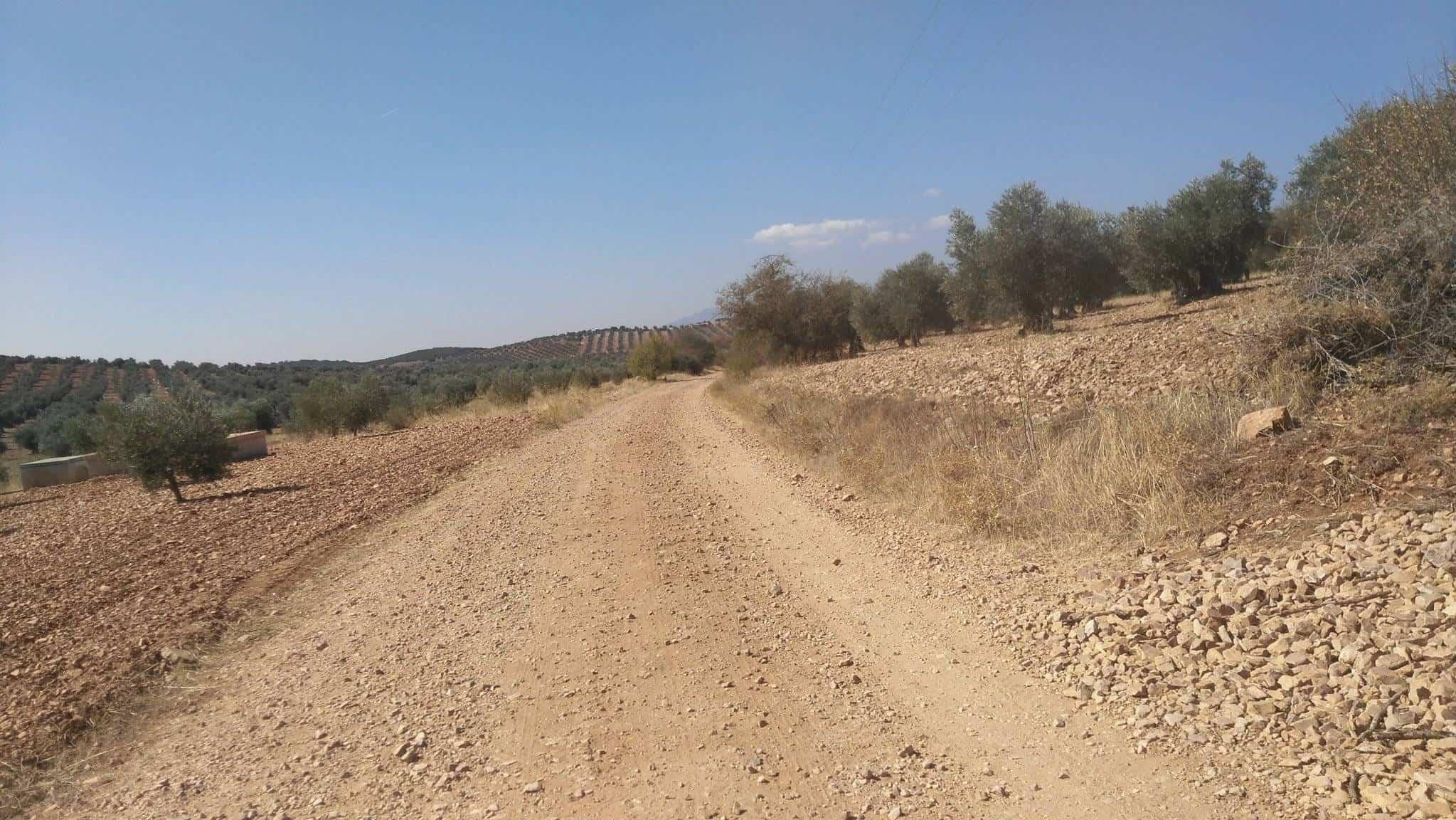 Caminos de Herencia (Ciudad Real)