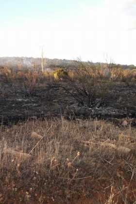 incendio en sierra el bombo de Herencia 10 280x420 - 6 hectáreas afectadas por el fuego en Herencia