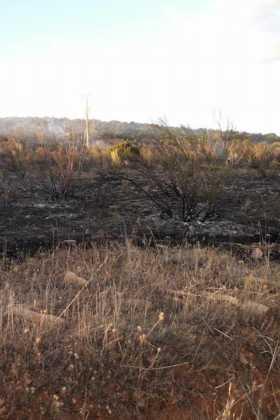 6 hectáreas afectadas por el fuego en Herencia 13
