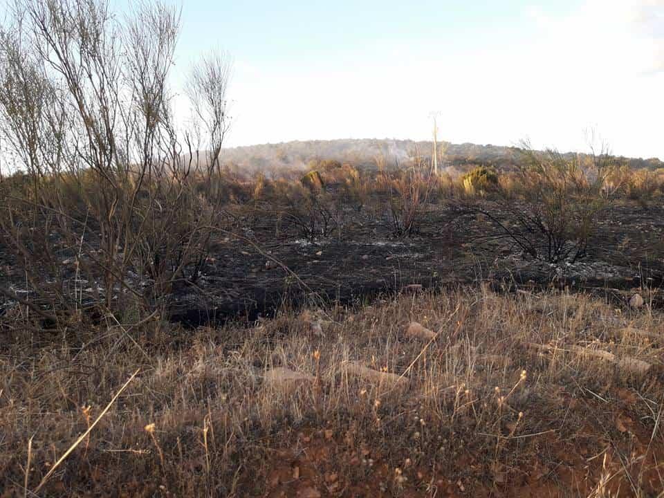 """incendio en sierra el bombo de Herencia 10 - Fotografías del incendio en la Sierra """"El Bombo"""" de Herencia"""