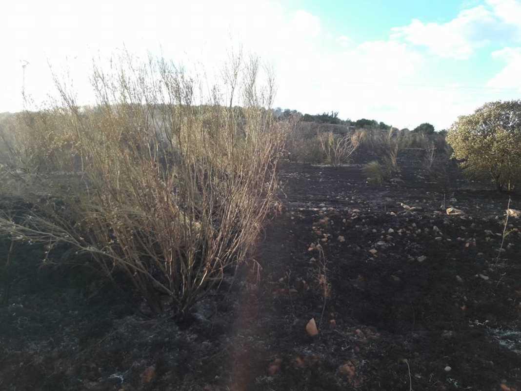 "incendio en sierra el bombo de Herencia 2 1068x801 - Fotografías del incendio en la Sierra ""El Bombo"" de Herencia"