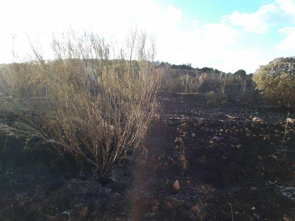 """incendio en sierra el bombo de Herencia 2 - Fotografías del incendio en la Sierra """"El Bombo"""" de Herencia"""