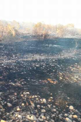 incendio en sierra el bombo de Herencia 6 280x420 - 6 hectáreas afectadas por el fuego en Herencia
