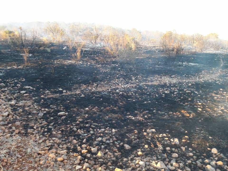 """incendio en sierra el bombo de Herencia 6 - Fotografías del incendio en la Sierra """"El Bombo"""" de Herencia"""