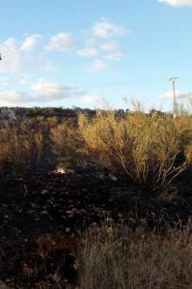 incendio en sierra el bombo de Herencia 7 280x420 - 6 hectáreas afectadas por el fuego en Herencia