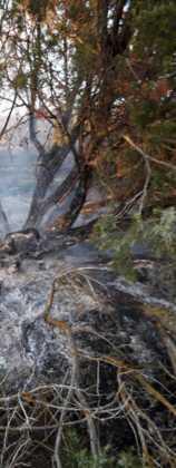 incendio en sierra el bombo de Herencia 8 158x420 - 6 hectáreas afectadas por el fuego en Herencia