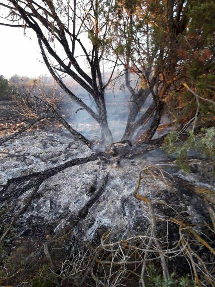"""incendio en sierra el bombo de Herencia 8 - Fotografías del incendio en la Sierra """"El Bombo"""" de Herencia"""