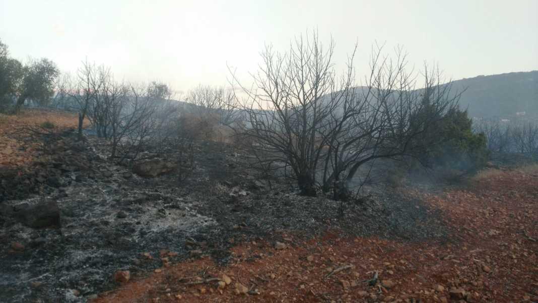 """incendio sierra el bombo herencia ciudad real 2 1068x601 - Controlado el incendio en la Sierra """"El Bombo"""" de Herencia (Ciudad Real)"""