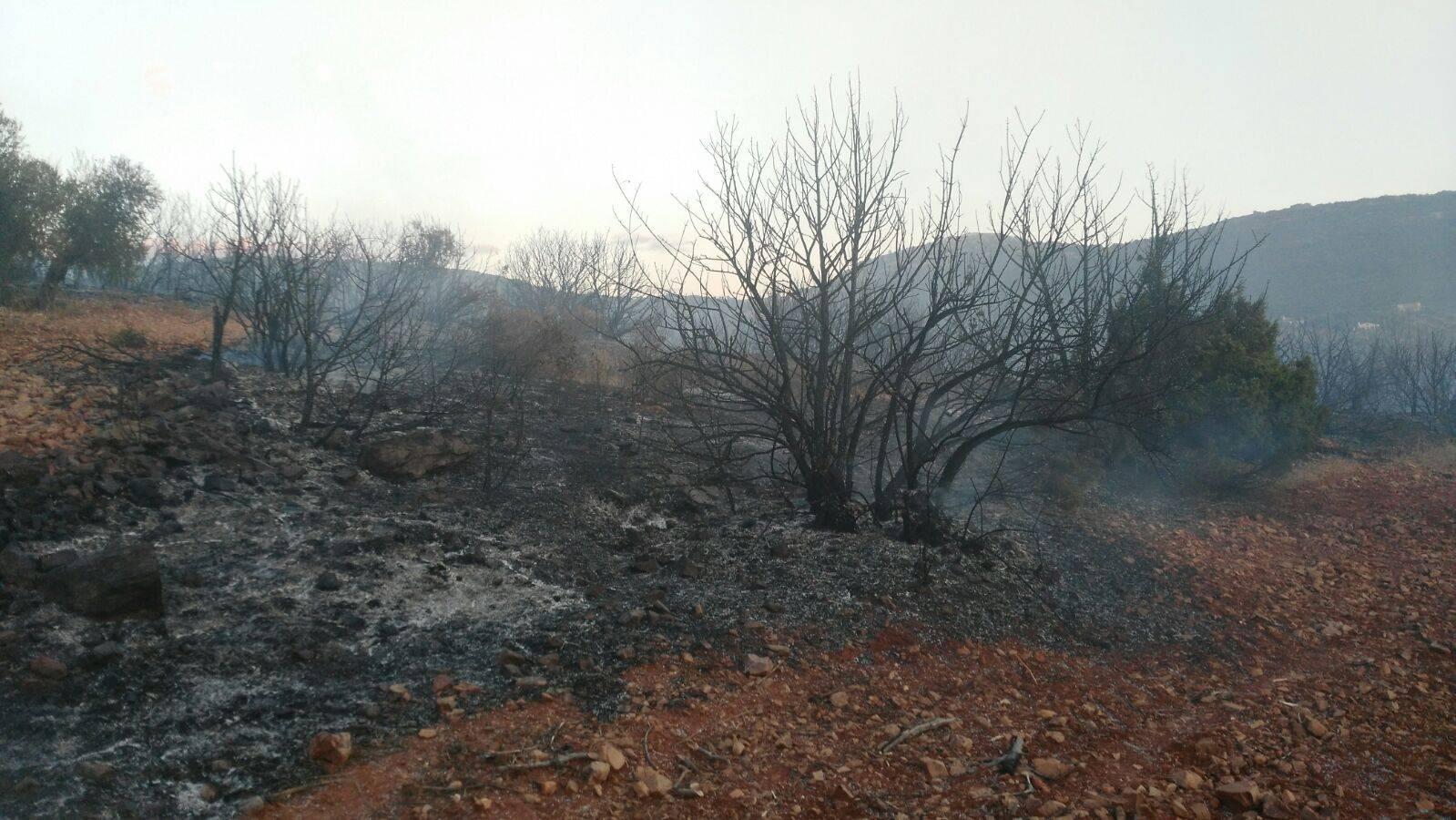 """incendio sierra el bombo herencia ciudad real 2 - Controlado el incendio en la Sierra """"El Bombo"""" de Herencia (Ciudad Real)"""
