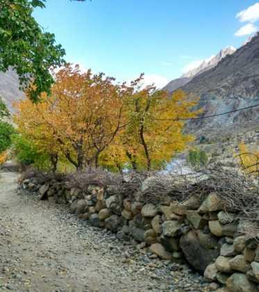 Perlé atravesando la singular Cachemira 78