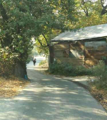Perlé atravesando la singular Cachemira 76