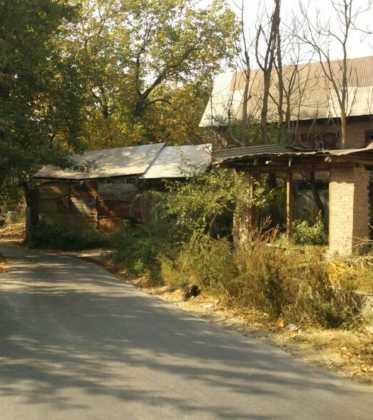 Perlé atravesando la singular Cachemira40 373x420 - Perlé atravesando la singular Cachemira