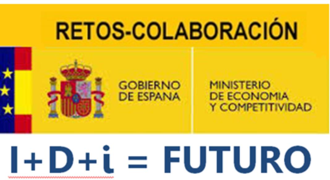 Retos – Colaboración del Programa Estatal de Investigación 1