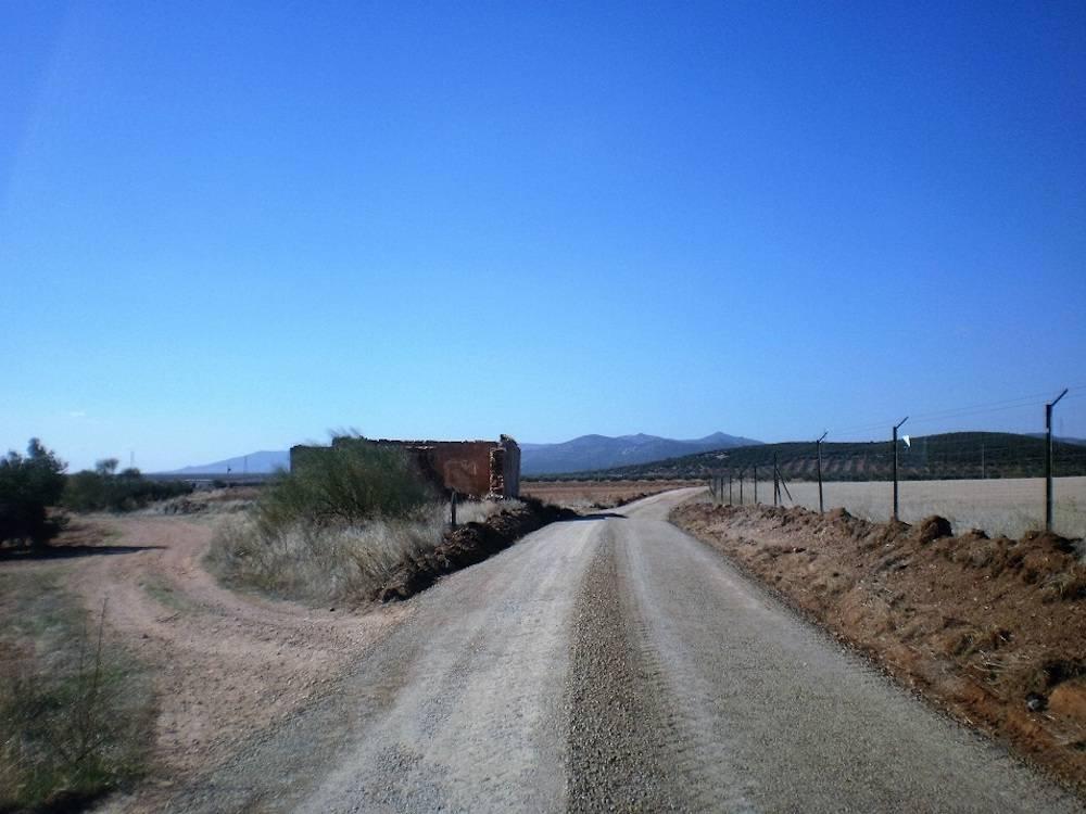 Acondicionados 11 kilómetros de caminos rurales en Herencia 6
