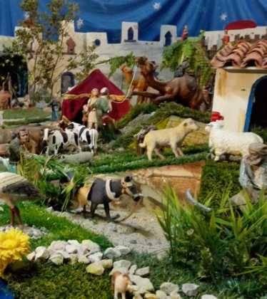 07 Belen de Jesus Lopez Escribano 22Chamusca2205 374x420 - Galería de imágenes de la III Muestra de belenes de Herencia