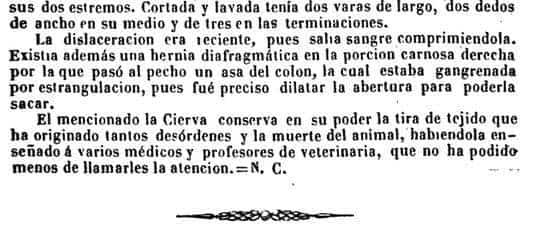 desordenes 2 - Un herenciano entre los fundadores de la Sociedad de Medicina Veterinaria de España