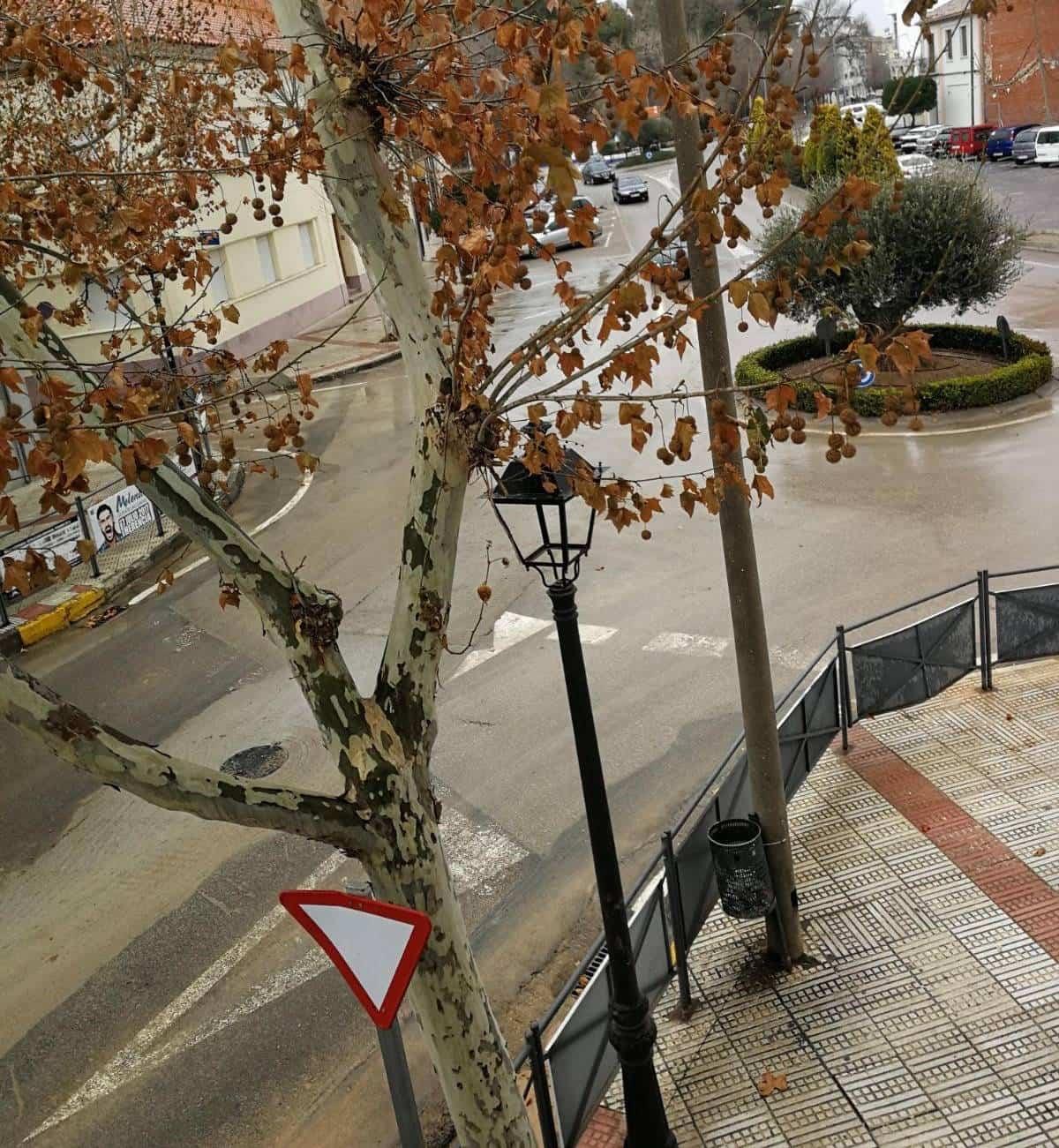 obras colector avda constitucion herencia - Finalizadas las obras del nuevo colector en Avda. Constitución