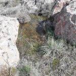 agua sierras herencia 12 150x150 - Fotogalería Sierra de las tres fuentes en Herencia