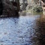 agua sierras herencia 9 150x150 - Fotogalería Sierra de las tres fuentes en Herencia