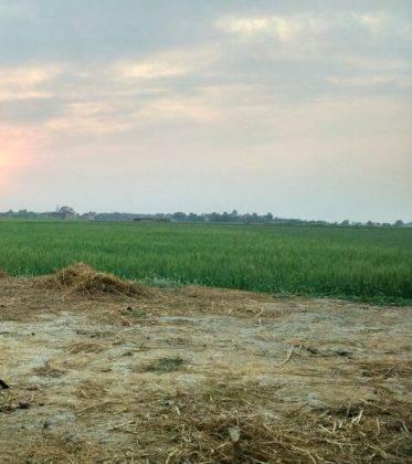 Perlé de Cuaresma recorriendo India de Oeste a Este. Etapas 321 a 358 96