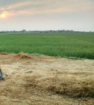 Perlé de Cuaresma recorriendo India de Oeste a Este. Etapas 321 a 358 94