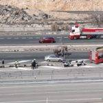 Un elefante muerto en un accidente en la A-30 en Albacete 2