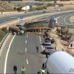 accidente a 30 elefantes 3 150x150 - Un elefante muerto en un accidente en la A-30 en Albacete
