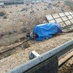 Un elefante muerto en un accidente en la A-30 en Albacete 5