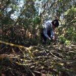 batida limpieza campo herencia scout 5 150x150 - Éxito de la batida de limpieza del campo en Herencia ¡Galería actualizada!