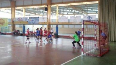 SMD BM Quijote Herencia alevinas 390x220 - El SMD BM Quijote Herencia alevín femenino se proclama campeón regional de balonmano