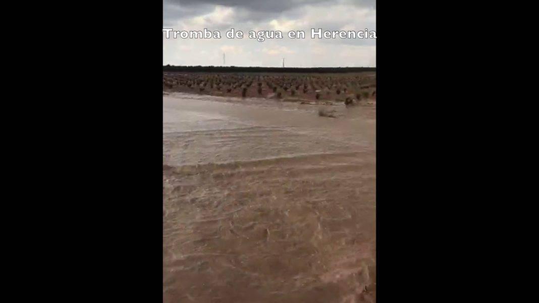 Algunas huertas de Herencia afectadas por la tromba de agua 1