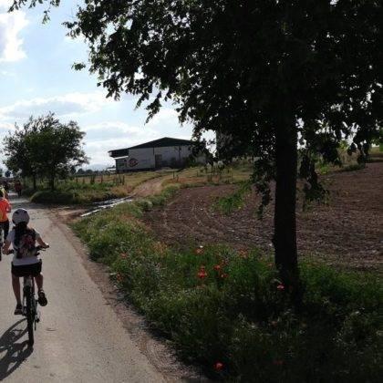 Galería de fotos y vídeo de la XI Marcha en bicicleta 36